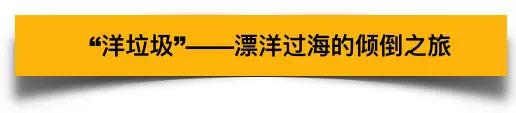 """86国""""洋垃圾""""被大陆拒签 最终倾倒在了台湾...图2"""